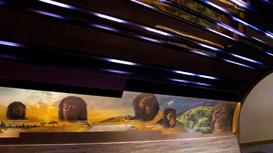 Smithsonian Koch Human Origins Gallery